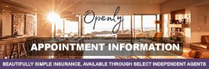Openly Inc