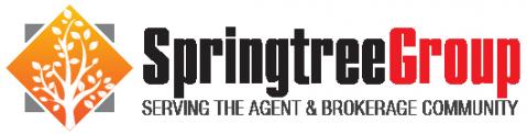Springtree Group - Financing
